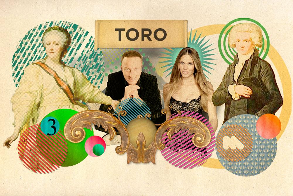 Toro_01.jpg
